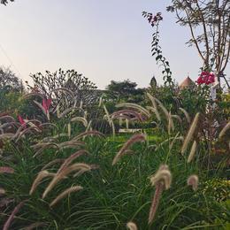 xiaonanguitar于2020-12-02 23:32发布的图片