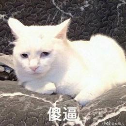 luoye_yangfan于2020-11-23 15:39发布的图片