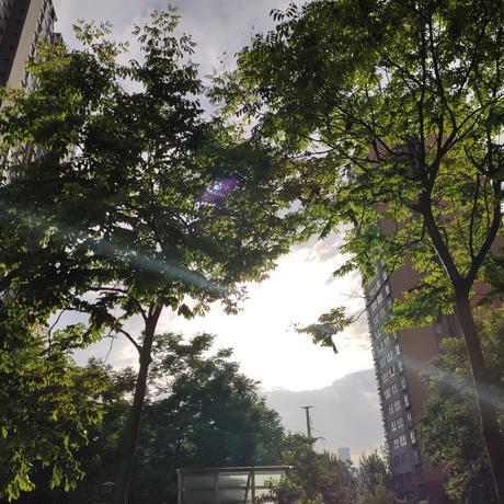 程序员紫菜苔于2021-06-07 18:45发布的图片