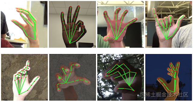 hand_crops.png
