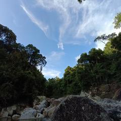 岛上码农于2021-10-04 20:41发布的图片